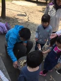 明日3月23日は 親子組一日体験会 最終回!