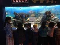 水族館の一番人気は、、、