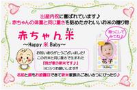 大人気!赤ちゃん米