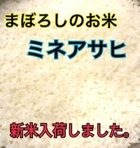 まぼろしのお米!新米入荷しました。