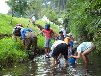 ホタル学校「ホタルの川の生き物調査」を開催しました!