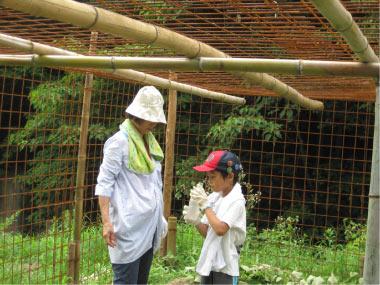 イモ作り体験第2弾「畑の手入れ」と生き物観察を開催しました!