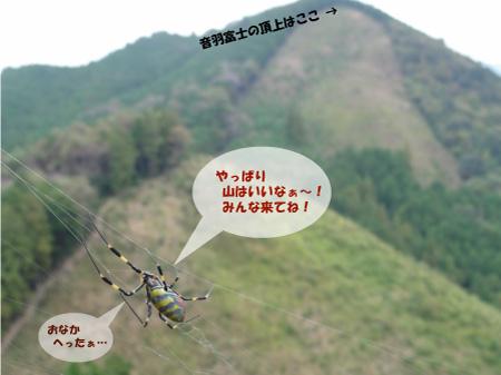 ホタル学校「大展望!音羽富士トレッキング」開催のお知らせ