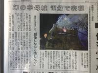 16日の中日新聞に掲載された石垣イルミネーション、やっと完成