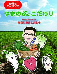 セールスプロモーション/スーパーやまのぶ野菜編