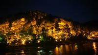 香嵐溪のライトアップ