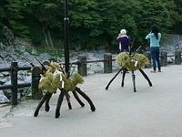 宮町鉄砲隊  足助祭りにの始まりです。