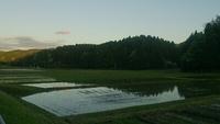 田園を散歩