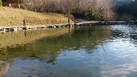 戸神の池管理釣り場