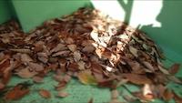 落葉の布団