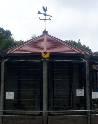 屋根に風見鶏