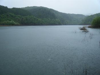 阿木川ダムで、ハス、バス、ナマズ