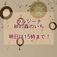 カルジーナ 秋の森のいち 明日は15時までに変更!! 2017/10/28 23:21:56