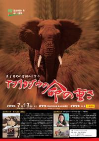 ケニア獣医師 滝田明日香さんの来日講演のお知らせ