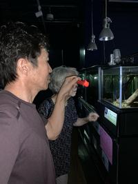 竹島水族館  ナイトアクアリウム  お土産に館長の名刺  お米