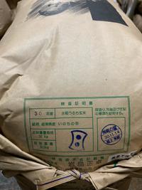 龍の瞳  農薬不使用米  入荷です。
