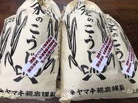 ササニシキ無農薬米糀入荷