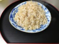 巨大胚芽  玄米ご飯