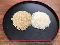 玄米ご飯  さらっと機械通します