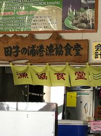 東京講習会  田子の浦生しらす丼