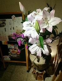 ランチお休みのご案内! 2017/02/15 10:30:00