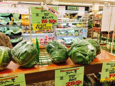 旬野菜で美肌維持!「春キャベツのオム焼き」