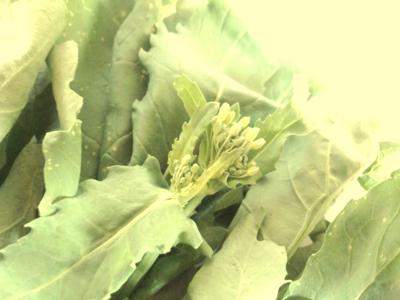 つぼみ菜のヘルシー天ぷら