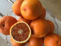 3度目のブラッドオレンジ!