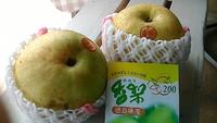 徳島県産 香梨