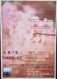 お寺で〝お花見ヨガ〟やります!!