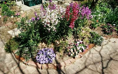春の庭・1