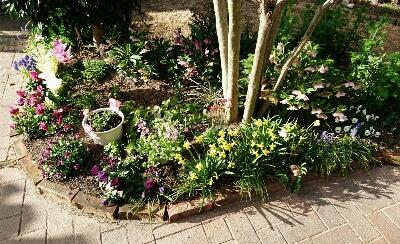 春の庭・2