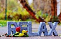 【立春を迎える2月、肝経と胆経の養生が大切です!】ゆる*Relax 2月のレッスンスケジュール