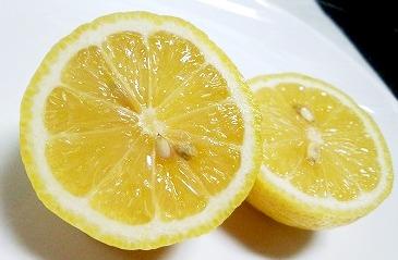 皮ごといただく!無農薬レモン