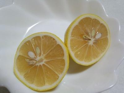 国産無農薬レモン 皮ごといただきます!