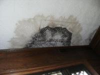 天井や壁にシミ?? 雨漏りにみる「倹約のススメ」1