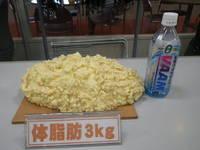 ダイエット①新企画!ついに始動!?